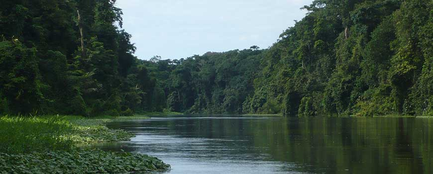 carablanca-tortuguero-hightravel