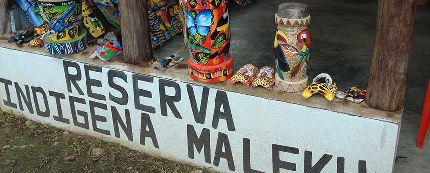 tucano-arenal-reserva-maleku-hightravel
